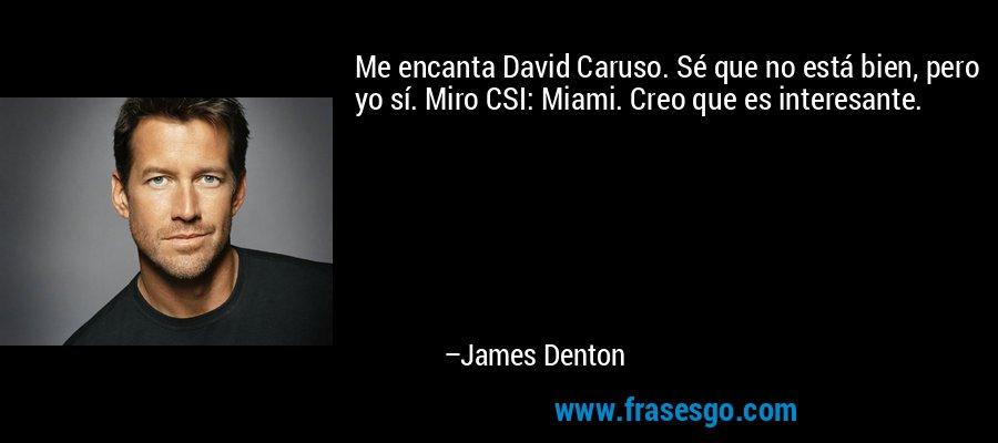 Me encanta David Caruso. Sé que no está bien, pero yo sí. Miro CSI: Miami. Creo que es interesante. – James Denton