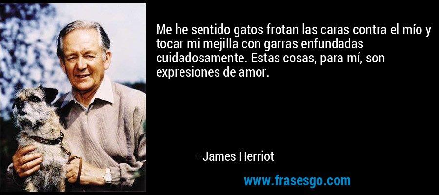 Me he sentido gatos frotan las caras contra el mío y tocar mi mejilla con garras enfundadas cuidadosamente. Estas cosas, para mí, son expresiones de amor. – James Herriot
