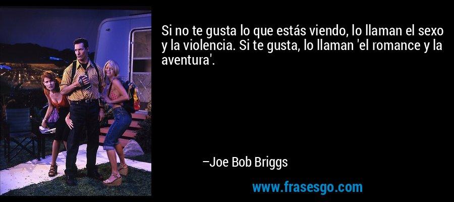 Si no te gusta lo que estás viendo, lo llaman el sexo y la violencia. Si te gusta, lo llaman 'el romance y la aventura'. – Joe Bob Briggs