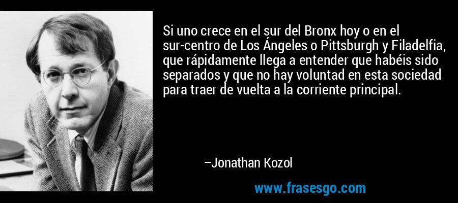 Si uno crece en el sur del Bronx hoy o en el sur-centro de Los Ángeles o Pittsburgh y Filadelfia, que rápidamente llega a entender que habéis sido separados y que no hay voluntad en esta sociedad para traer de vuelta a la corriente principal. – Jonathan Kozol