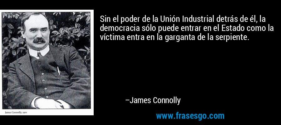 Sin el poder de la Unión Industrial detrás de él, la democracia sólo puede entrar en el Estado como la víctima entra en la garganta de la serpiente. – James Connolly