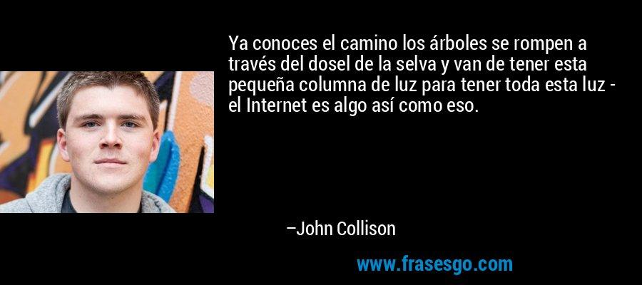 Ya conoces el camino los árboles se rompen a través del dosel de la selva y van de tener esta pequeña columna de luz para tener toda esta luz - el Internet es algo así como eso. – John Collison
