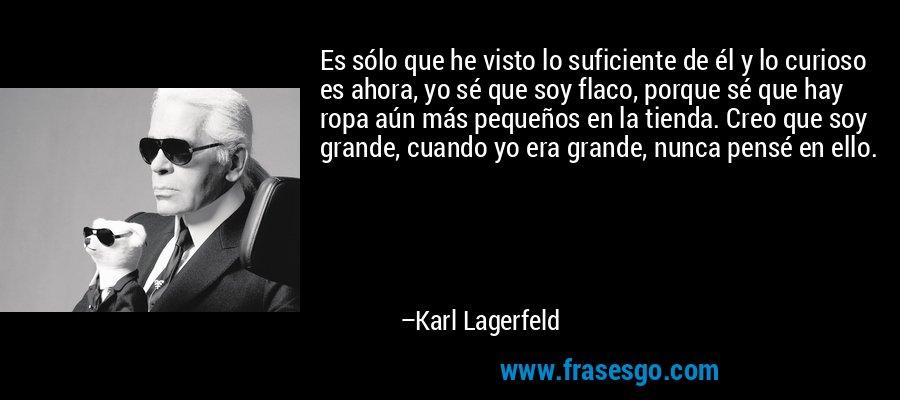 Es sólo que he visto lo suficiente de él y lo curioso es ahora, yo sé que soy flaco, porque sé que hay ropa aún más pequeños en la tienda. Creo que soy grande, cuando yo era grande, nunca pensé en ello. – Karl Lagerfeld