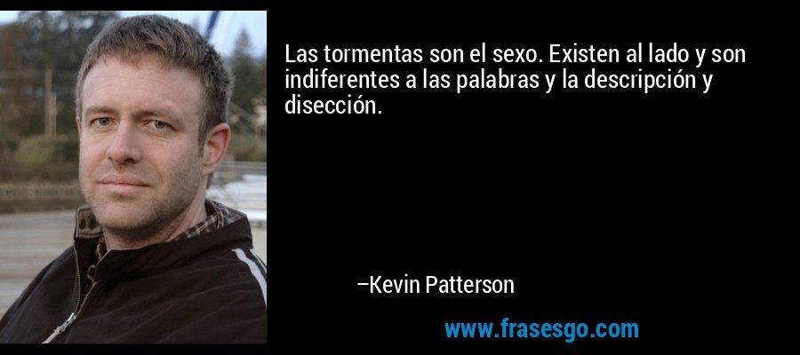 Las tormentas son el sexo. Existen al lado y son indiferentes a las palabras y la descripción y disección. – Kevin Patterson