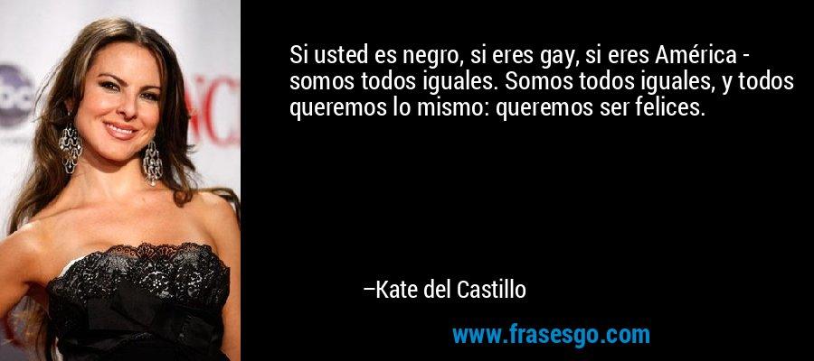Si usted es negro, si eres gay, si eres América - somos todos iguales. Somos todos iguales, y todos queremos lo mismo: queremos ser felices. – Kate del Castillo