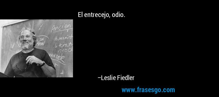 El entrecejo, odio. – Leslie Fiedler