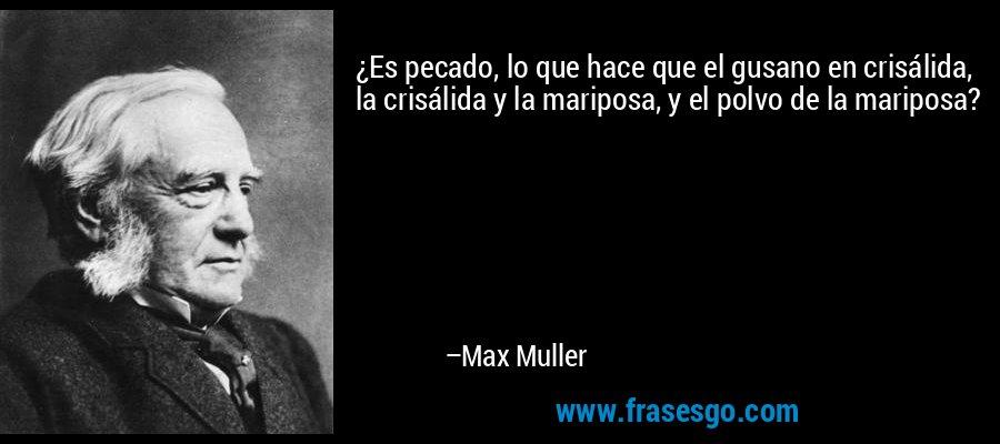 ¿Es pecado, lo que hace que el gusano en crisálida, la crisálida y la mariposa, y el polvo de la mariposa? – Max Muller