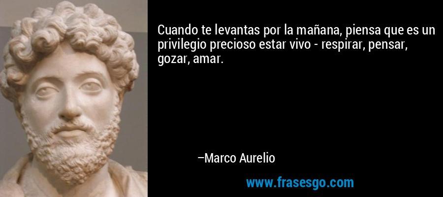 Cuando te levantas por la mañana, piensa que es un privilegio precioso estar vivo - respirar, pensar, gozar, amar. – Marco Aurelio