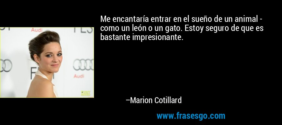 Me encantaría entrar en el sueño de un animal - como un león o un gato. Estoy seguro de que es bastante impresionante. – Marion Cotillard