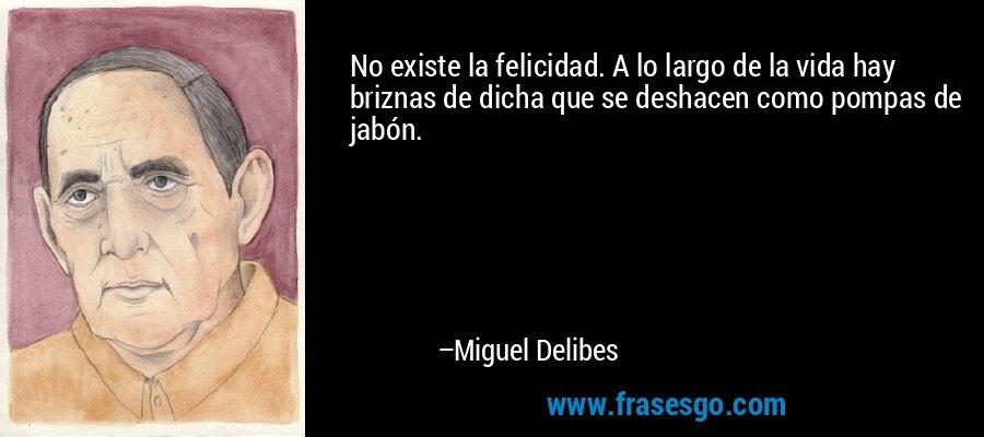 No existe la felicidad. A lo largo de la vida hay briznas de dicha que se deshacen como pompas de jabón. – Miguel Delibes