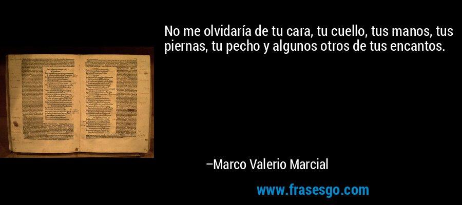 No me olvidaría de tu cara, tu cuello, tus manos, tus piernas, tu pecho y algunos otros de tus encantos. – Marco Valerio Marcial
