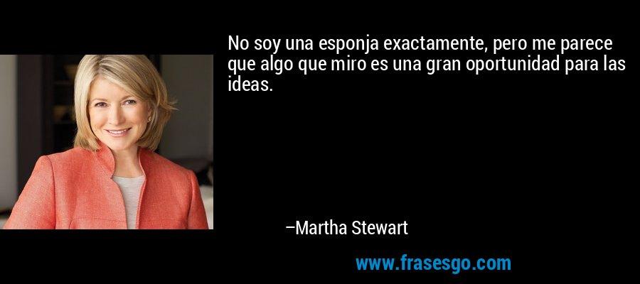 No soy una esponja exactamente, pero me parece que algo que miro es una gran oportunidad para las ideas. – Martha Stewart