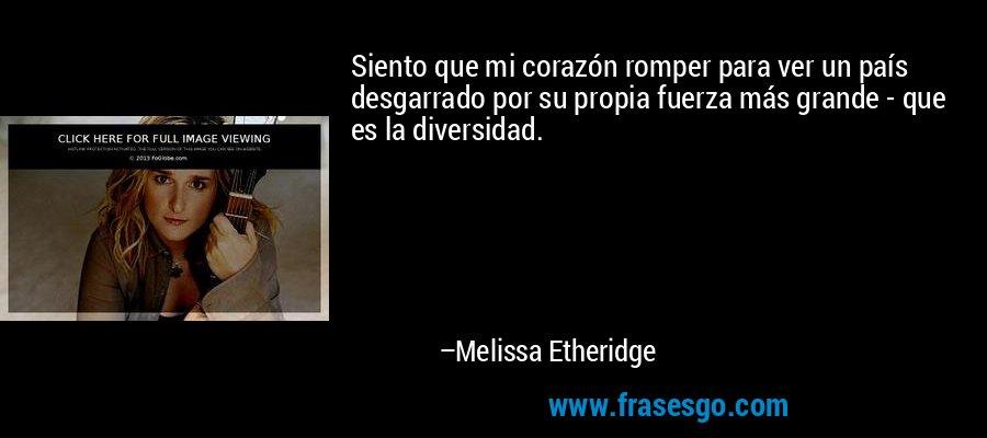 Siento que mi corazón romper para ver un país desgarrado por su propia fuerza más grande - que es la diversidad. – Melissa Etheridge