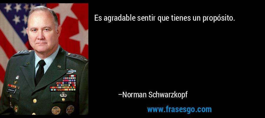 Es agradable sentir que tienes un propósito. – Norman Schwarzkopf