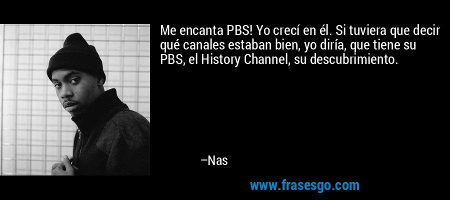 Me encanta PBS! Yo crecí en él. Si tuviera que decir qué canales estaban bien, yo diría, que tiene su PBS, el History Channel, su descubrimiento. – Nas