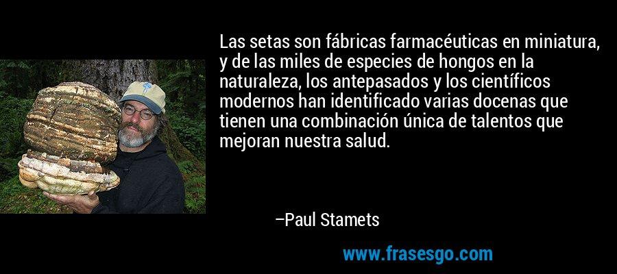 Las setas son fábricas farmacéuticas en miniatura, y de las miles de especies de hongos en la naturaleza, los antepasados y los científicos modernos han identificado varias docenas que tienen una combinación única de talentos que mejoran nuestra salud. – Paul Stamets