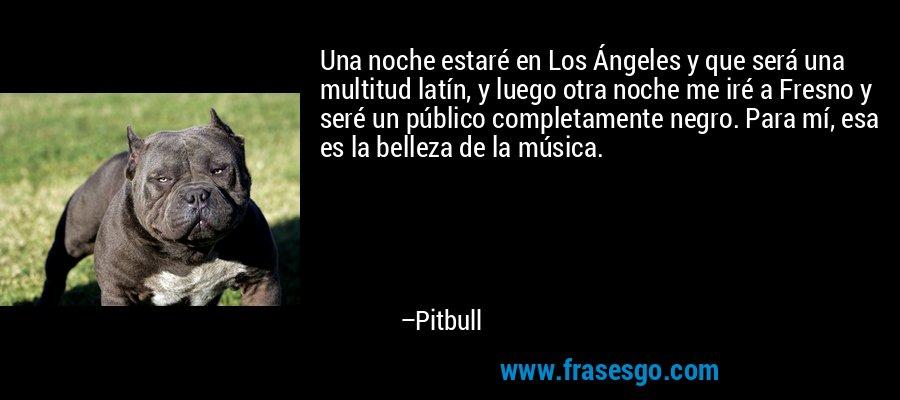 Una noche estaré en Los Ángeles y que será una multitud latín, y luego otra noche me iré a Fresno y seré un público completamente negro. Para mí, esa es la belleza de la música. – Pitbull