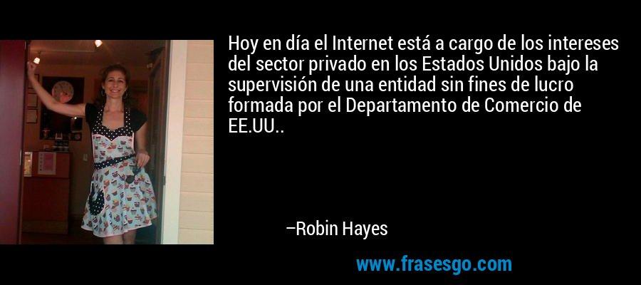 Hoy en día el Internet está a cargo de los intereses del sector privado en los Estados Unidos bajo la supervisión de una entidad sin fines de lucro formada por el Departamento de Comercio de EE.UU.. – Robin Hayes