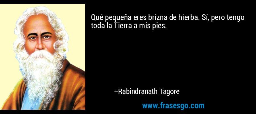 Qué pequeña eres brizna de hierba. Sí, pero tengo toda la Tierra a mis pies. – Rabindranath Tagore