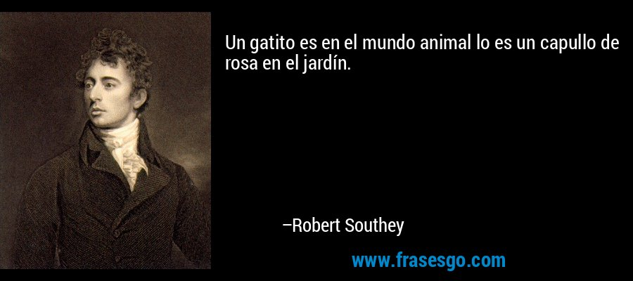 Un gatito es en el mundo animal lo es un capullo de rosa en el jardín. – Robert Southey