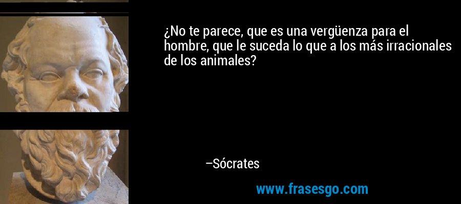 ¿No te parece, que es una vergüenza para el hombre, que le suceda lo que a los más irracionales de los animales? – Sócrates
