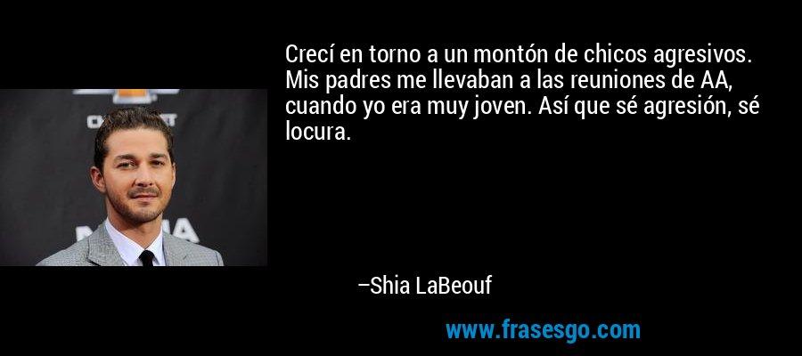 Crecí en torno a un montón de chicos agresivos. Mis padres me llevaban a las reuniones de AA, cuando yo era muy joven. Así que sé agresión, sé locura. – Shia LaBeouf