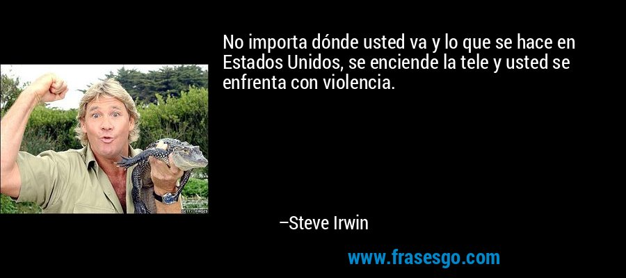 No importa dónde usted va y lo que se hace en Estados Unidos, se enciende la tele y usted se enfrenta con violencia. – Steve Irwin