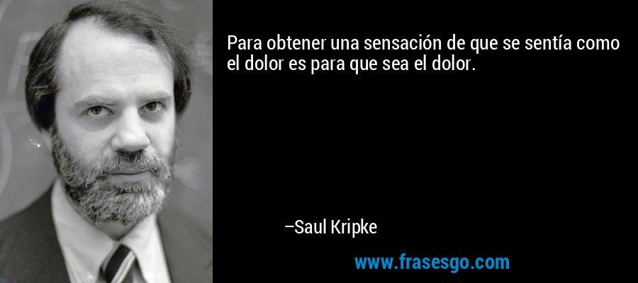 Para obtener una sensación de que se sentía como el dolor es para que sea el dolor. – Saul Kripke