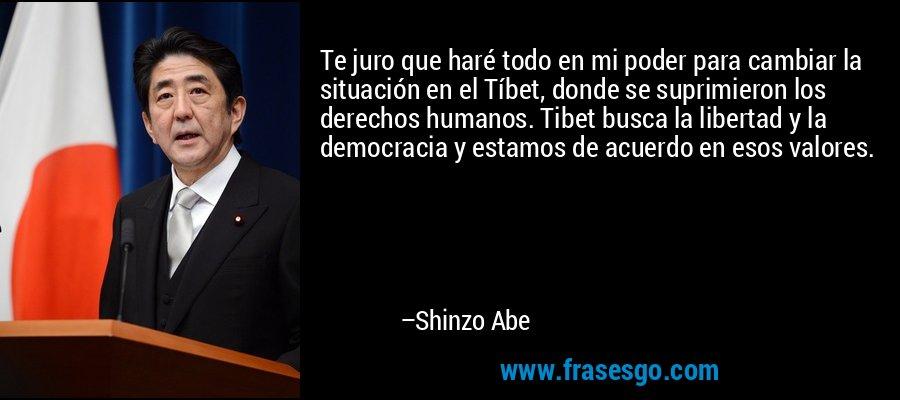 Te juro que haré todo en mi poder para cambiar la situación en el Tíbet, donde se suprimieron los derechos humanos. Tibet busca la libertad y la democracia y estamos de acuerdo en esos valores. – Shinzo Abe