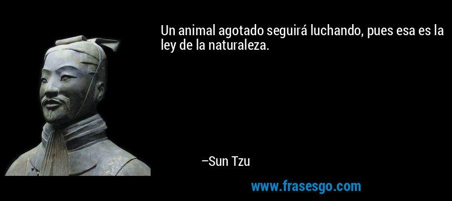Un animal agotado seguirá luchando, pues esa es la ley de la naturaleza. – Sun Tzu