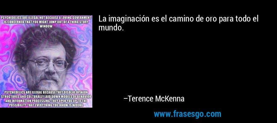 La imaginación es el camino de oro para todo el mundo. – Terence McKenna