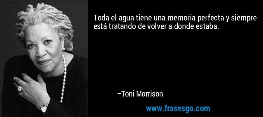 Toda el agua tiene una memoria perfecta y siempre está tratando de volver a donde estaba. – Toni Morrison