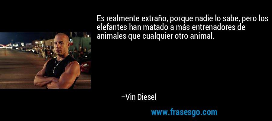 Es realmente extraño, porque nadie lo sabe, pero los elefantes han matado a más entrenadores de animales que cualquier otro animal. – Vin Diesel