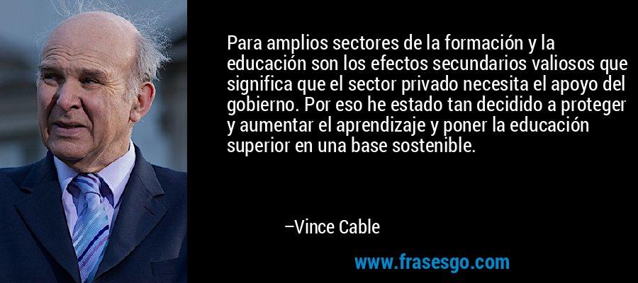 Para amplios sectores de la formación y la educación son los efectos secundarios valiosos que significa que el sector privado necesita el apoyo del gobierno. Por eso he estado tan decidido a proteger y aumentar el aprendizaje y poner la educación superior en una base sostenible. – Vince Cable