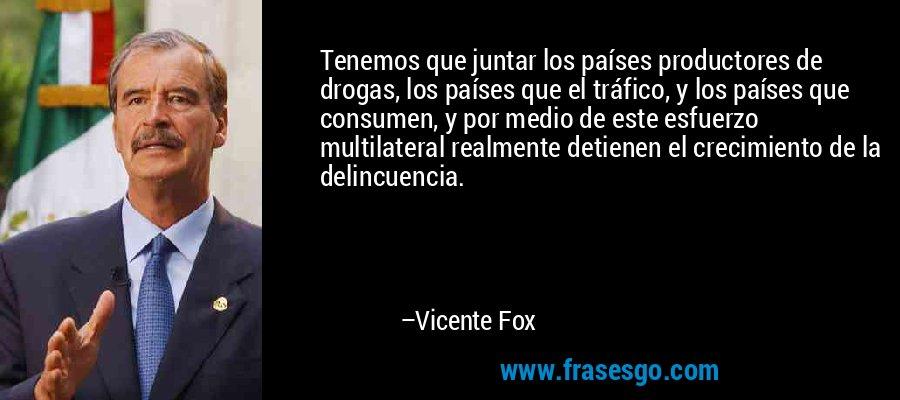 Tenemos que juntar los países productores de drogas, los países que el tráfico, y los países que consumen, y por medio de este esfuerzo multilateral realmente detienen el crecimiento de la delincuencia. – Vicente Fox