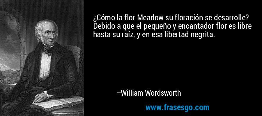 ¿Cómo la flor Meadow su floración se desarrolle? Debido a que el pequeño y encantador flor es libre hasta su raíz, y en esa libertad negrita. – William Wordsworth