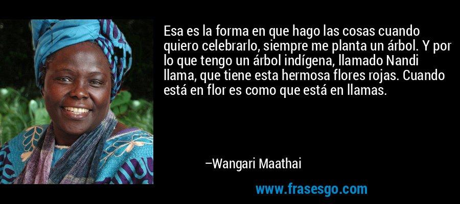 Esa es la forma en que hago las cosas cuando quiero celebrarlo, siempre me planta un árbol. Y por lo que tengo un árbol indígena, llamado Nandi llama, que tiene esta hermosa flores rojas. Cuando está en flor es como que está en llamas. – Wangari Maathai