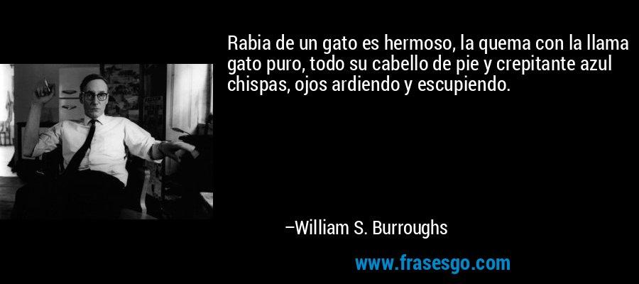 Rabia de un gato es hermoso, la quema con la llama gato puro, todo su cabello de pie y crepitante azul chispas, ojos ardiendo y escupiendo. – William S. Burroughs