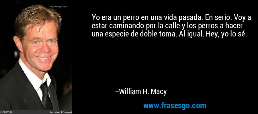 Yo era un perro en una vida pasada. En serio. Voy a estar caminando por la calle y los perros a hacer una especie de doble toma. Al igual, Hey, yo lo sé. – William H. Macy