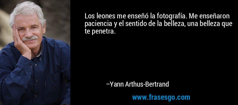 Los leones me enseñó la fotografía. Me enseñaron paciencia y el sentido de la belleza, una belleza que te penetra. – Yann Arthus-Bertrand