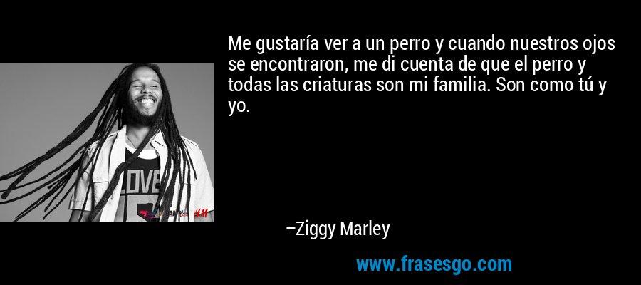 Me gustaría ver a un perro y cuando nuestros ojos se encontraron, me di cuenta de que el perro y todas las criaturas son mi familia. Son como tú y yo. – Ziggy Marley
