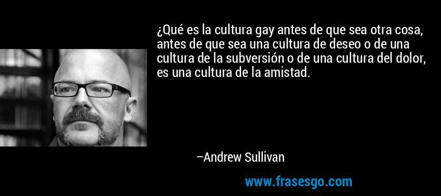 ¿Qué es la cultura gay antes de que sea otra cosa, antes de que sea una cultura de deseo o de una cultura de la subversión o de una cultura del dolor, es una cultura de la amistad. – Andrew Sullivan