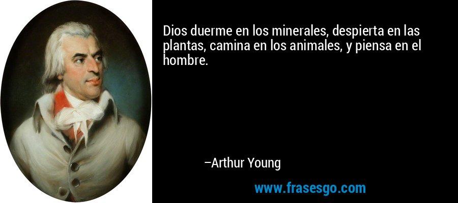 Dios duerme en los minerales, despierta en las plantas, camina en los animales, y piensa en el hombre. – Arthur Young