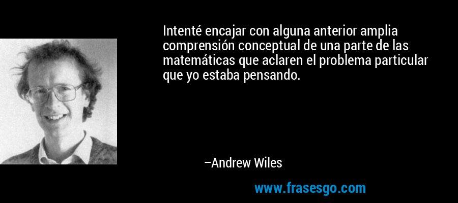 Intenté encajar con alguna anterior amplia comprensión conceptual de una parte de las matemáticas que aclaren el problema particular que yo estaba pensando. – Andrew Wiles