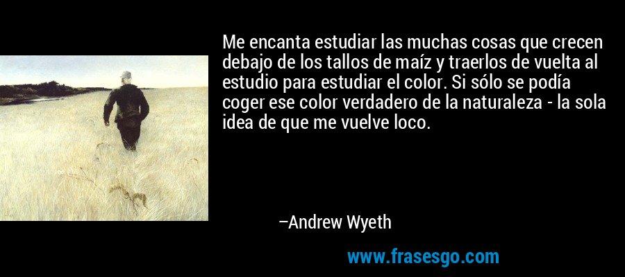 Me encanta estudiar las muchas cosas que crecen debajo de los tallos de maíz y traerlos de vuelta al estudio para estudiar el color. Si sólo se podía coger ese color verdadero de la naturaleza - la sola idea de que me vuelve loco. – Andrew Wyeth