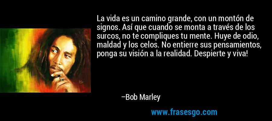 La vida es un camino grande, con un montón de signos. Así que cuando se monta a través de los surcos, no te compliques tu mente. Huye de odio, maldad y los celos. No entierre sus pensamientos, ponga su visión a la realidad. Despierte y viva! – Bob Marley