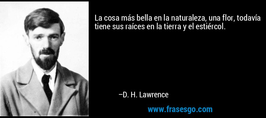 La cosa más bella en la naturaleza, una flor, todavía tiene sus raíces en la tierra y el estiércol. – D. H. Lawrence