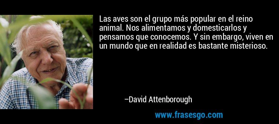 Las aves son el grupo más popular en el reino animal. Nos alimentamos y domesticarlos y pensamos que conocemos. Y sin embargo, viven en un mundo que en realidad es bastante misterioso. – David Attenborough