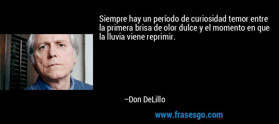 Siempre hay un período de curiosidad temor entre la primera brisa de olor dulce y el momento en que la lluvia viene reprimir. – Don DeLillo