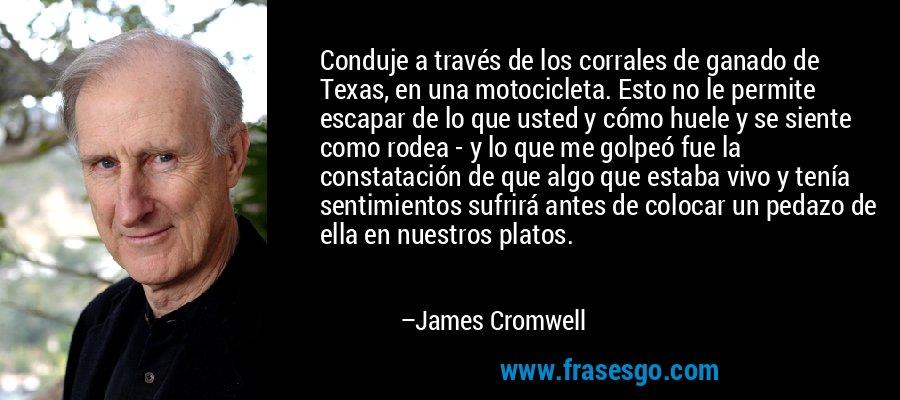 Conduje a través de los corrales de ganado de Texas, en una motocicleta. Esto no le permite escapar de lo que usted y cómo huele y se siente como rodea - y lo que me golpeó fue la constatación de que algo que estaba vivo y tenía sentimientos sufrirá antes de colocar un pedazo de ella en nuestros platos. – James Cromwell
